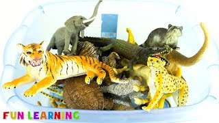 Learn Wild Animals For Kids with Fun Box of Animal Toys To Learn Colors