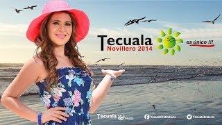 Festival Novillero 2014, Tecuala es único.