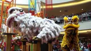 CNY 2014 ~ Acrobatic Lion Dance (Múa lân) by Kwong Ngai @ Mid Valley MegaMall