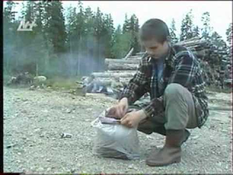 2006_09_04_expedition_old-growth Forest_Pudozh_Nika+.flv