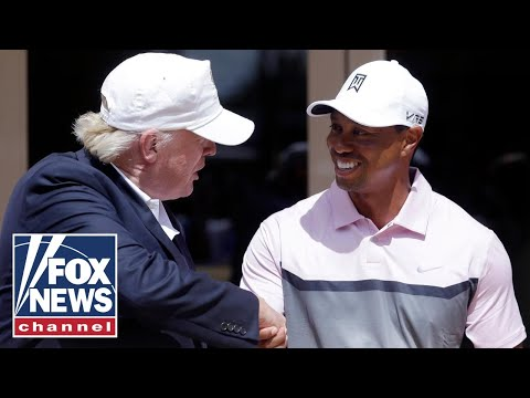 Trump reacts to Tiger Woods' car crash on 'Fox News Primetime'