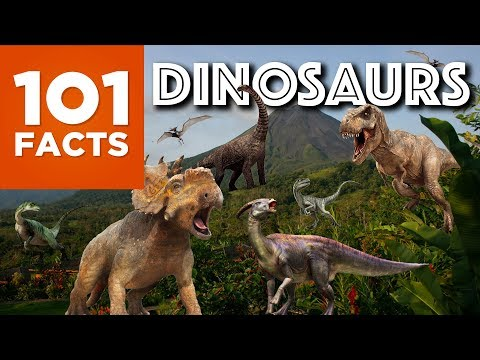 101 Facts About Dinosaurs