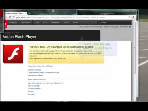 Google Chrome + RealPlayer Fix (Original Video)