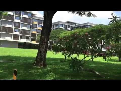 My University RMIT ( south Saigon ) Vietnam