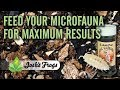 Feed your Microfauna for Maximum Results