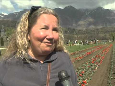 Foreign tourists flock to Indian Kashmir's Tulip Garden