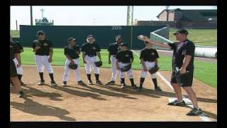 ripken baseball rundown