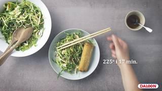 Spring Rolls med salat af spidskål, sprød kokos og limesauce