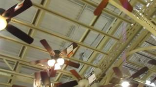 Ceiling fans at Home Depot (new ceiling fans)