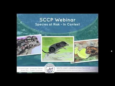 Species at Risk In Context Webinar - Part 1 Provincial Perspectives
