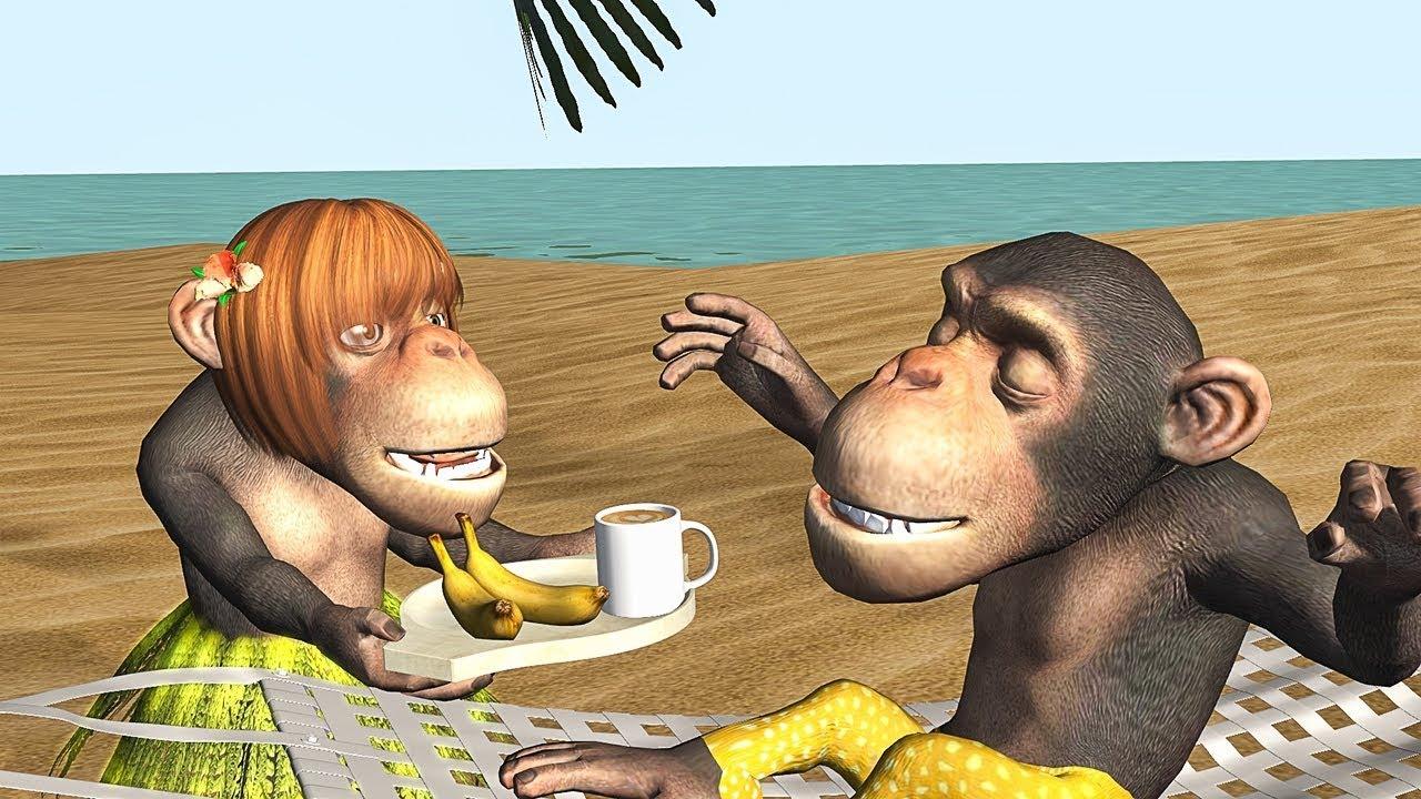 Funny Good Morning Song Monkeys Sing Good Morning Youtube