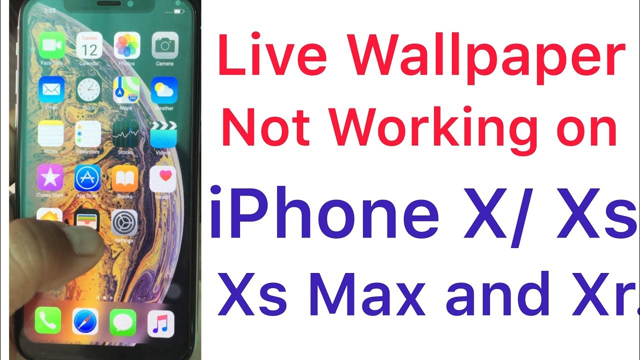 Live Wallpaper Not Working On Iphone Xs Xs Max And Xr Youtube