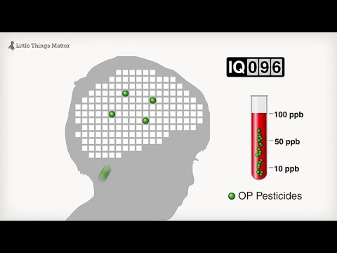 little things matter the impact of toxins on the developing brain