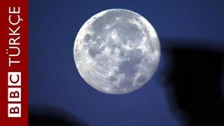 Türkiye ve dünyanın dört bir köşesinden süper Ay görüntüleri - BBC TÜRKÇE