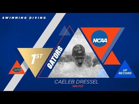 Florida Swimming: Caeleb Dressel 100 Fly NCAA Champion