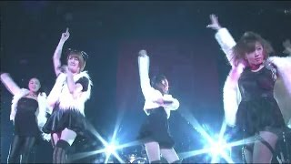 THE ポッシボー 「Do Me! Do!」(2013/11/24 赤坂BLITZ)