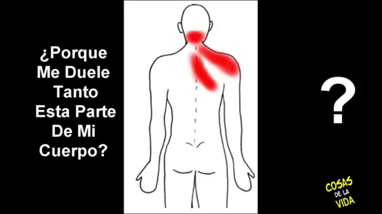 El dolor en los riñones a la neumonía a los adultos