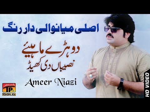 Sari Naseeban Diyan Khel - Ameer Niazi - Latest Song 2018 - Latest Punjabi And Saraiki