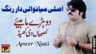 Sari Naseeban Diyan Khel - Ameer Niazi - Latest Song 2018 - Latest Punjabi And Saraiki