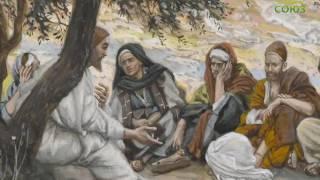 Читаем Евангелие вместе с Церковью. 29 мая 2017г