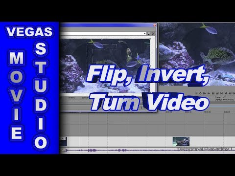 How to flip invert and turn video using sony vegas movie studio ccuart Image collections