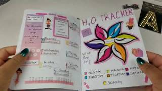 Fitness Bullet Journal Plan With Me May 20 -26, 2019 Video