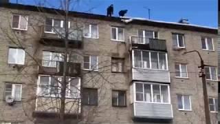 видео уборка снега с крыши