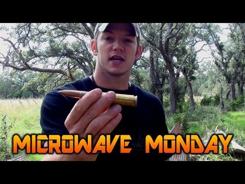 Live 50 Caliber Round in a Microwave