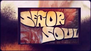 i ain t got no soul today what it is y all by seor soul from mucho funky best of seor soul