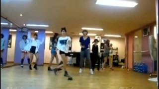 T-Ara - Roly Poly dance practice mirrored