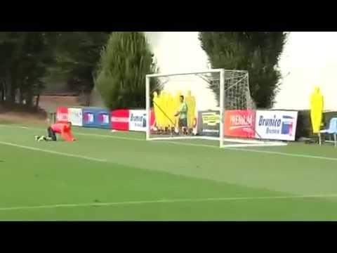 Davide Santon Goal #1 (FIFA 16)