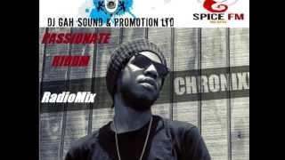 CHRONIXX   Champion + Passionate Riddim Mix   2013