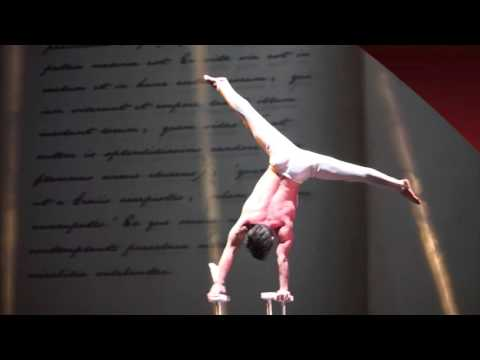 Shanghai Acrobatic Troupe