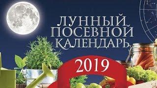 Лунный посевной календарь 2019 года садовода и огородника
