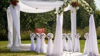 выездная регистрация брака. красиво
