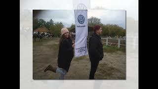 Чемпионат Запорожской области по конному спорту 2018