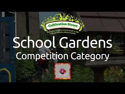 Cultivation Street: School Gardens