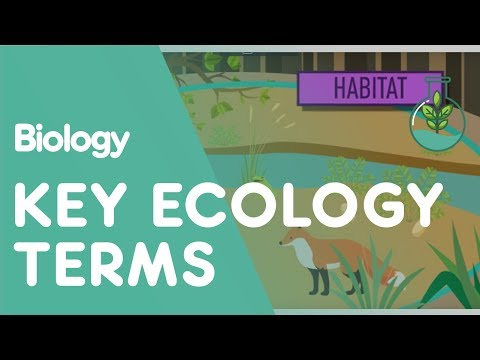 Key Ecology Terms | Ecology and Environment | Biology | FuseSchool