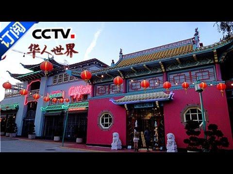 《华人世界》 20161111 | CCTV-4