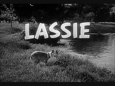 Lassie series photos and theme song
