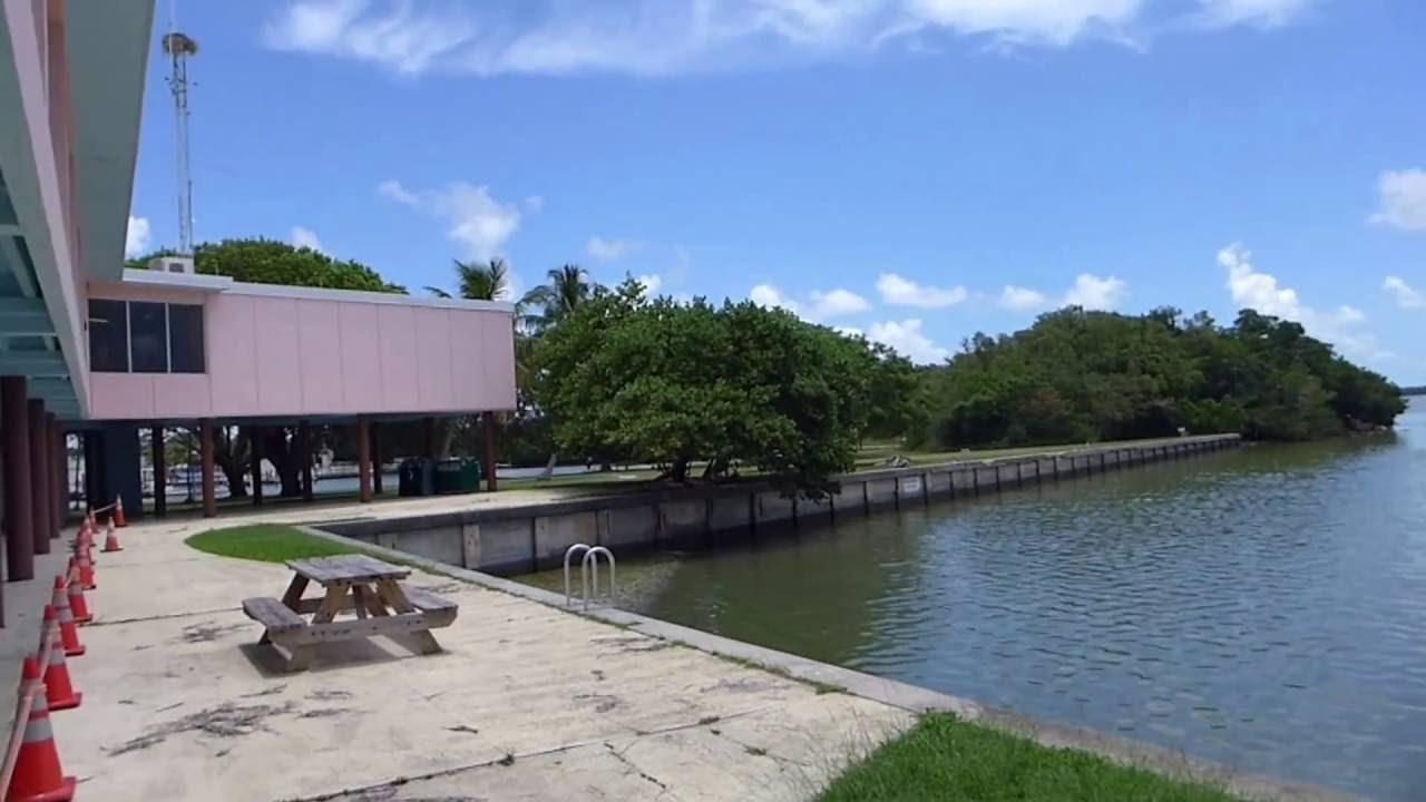 Everglades National Park Florida Flamingo Visitor