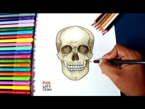 Dibujos de calaveras para colorear, cada dibujo, imagen te encantará.