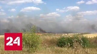 В Саратовской области борются с пожаром в районе АЭС