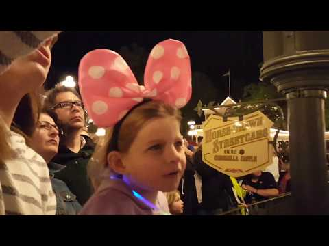 Magic Kingdom fireworks show live for our first 2,000 subscribers!