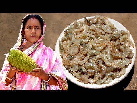 Echor Chingri Recipe   Village Style Cooking Raw Jackfruit with Prawn   Indian Village Food
