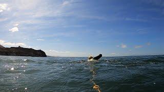 Windy & Rough Open Water Ocean Swim