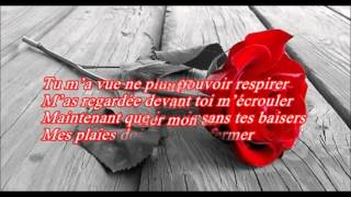 Karaoké Stitches Shawn Mendès(french version)