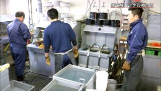 「TOKYO匠の技」技能継承動画めっき熟練技能編.flv