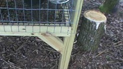dog kennel measurements