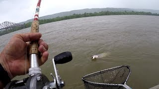 Catfishing The Tennessee River! Catching Catfish In High, Muddy Water